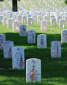 Photo of decorated graves at Arlington National Cemetery on Memorial Day