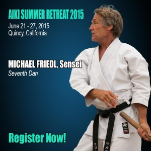 Michael Friedl Sensei 2015 Register Now